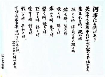 DSCN0368_0000-2.jpg